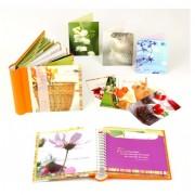 portfolio images_Page_03
